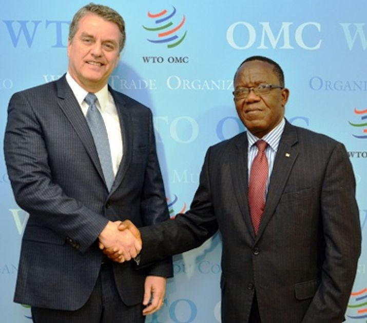Commerce Minister meets with the Director-General of the World Trade Organization at the e-Commerce Week